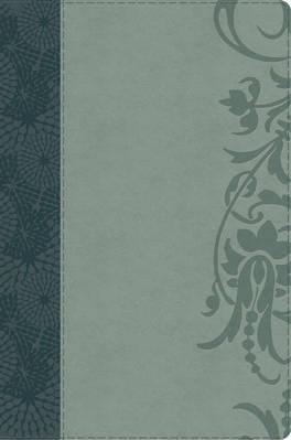 The Study Bible for Women: HCSB Large Print Edition, Teal/Sage LeatherTouch