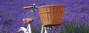 Pashley Wicker Basket on the Britannia bicycle in a field of lavender