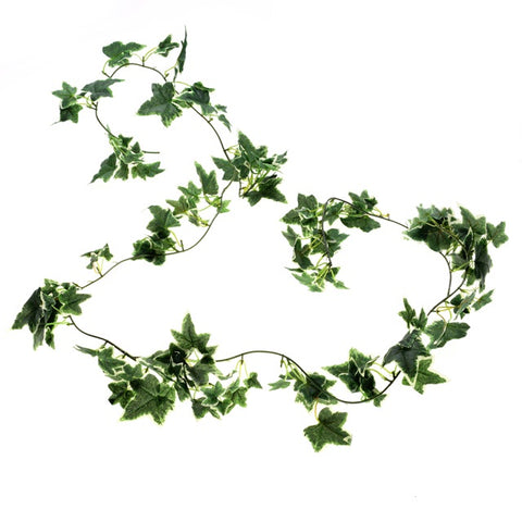 VARIGATED IVY GARLAND