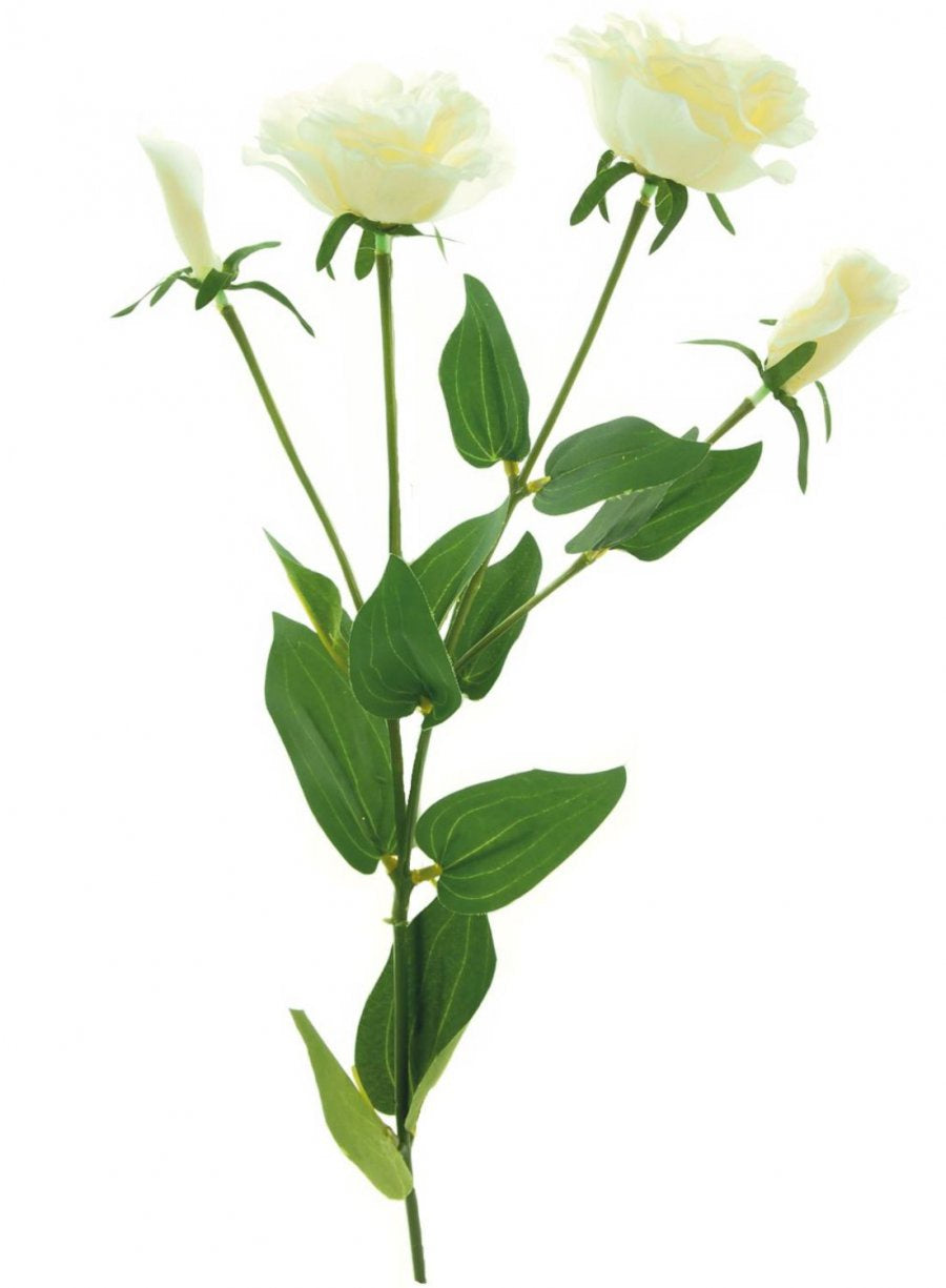 LISIANTHUS SPRAY IVORY