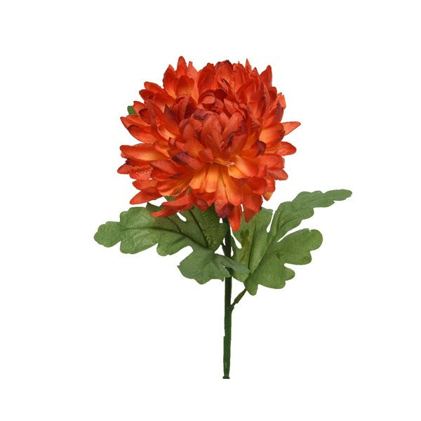CHRYSANTHEMUM ORANGE