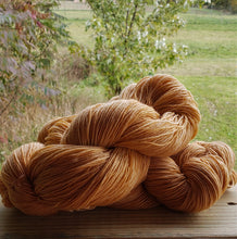 Load image into Gallery viewer, Pumpkin Blue Faced Leicester Yarn