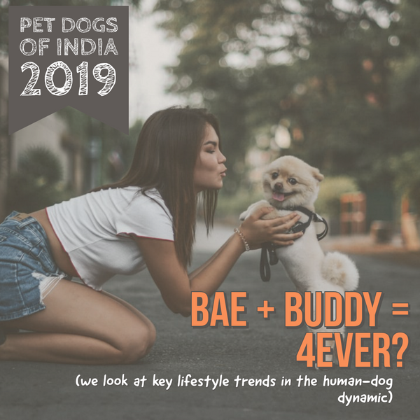 Bae + Buddy = 4Ever? LANA Paws Survey 2019 Findings Part II