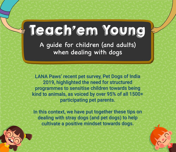 Teach 'em Young - A guide for children (and adults) when dealing with dogs