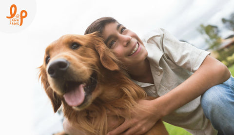 best-reasons-that-will-convince-you-to-have-a-pet