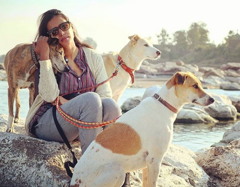 Divya Dugar with her three dogs