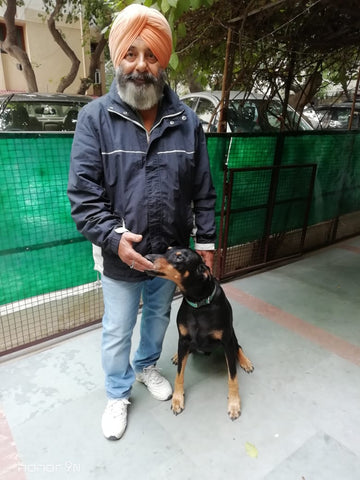Lana Paws dog training for new dog owners India