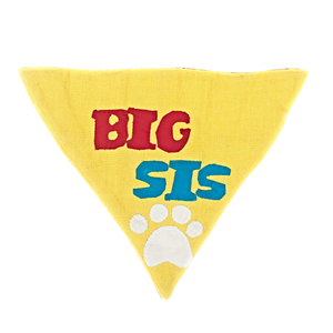 Big Sis - Handmade Patchwork Slip-on Dog Bandana (Limited Edition)