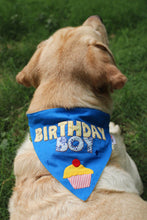 lana paws birthday dog accessory for a boy dog in blue