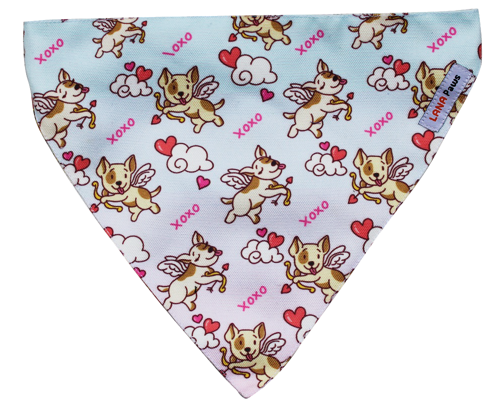 Mi Amor (Valentine's Day Special) - Adjustable Bandana
