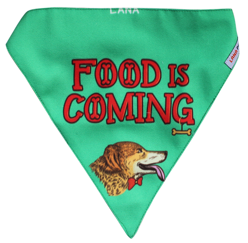 Lana Paws game of bones dog bandana