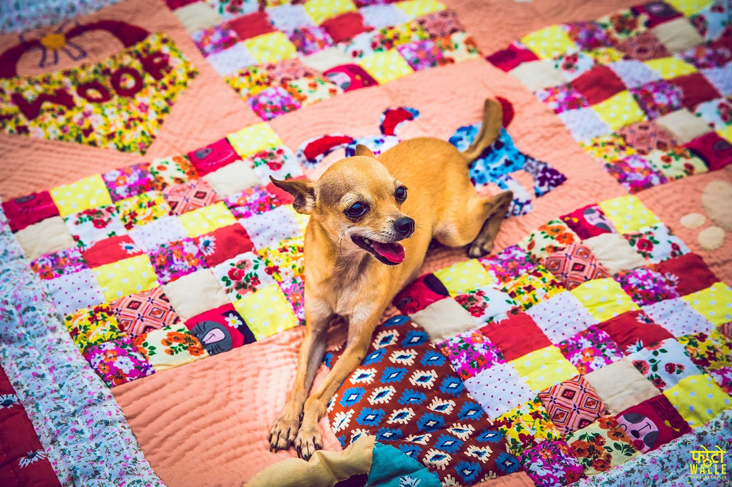 Lanapaws patchwork dog bed mat pastel