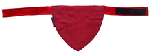 Applique Work Tuxedo Dog Bandana - Red (Adjustable)