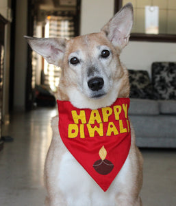 Lana Paws diwali bandanna for dogs