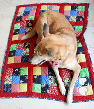 Lana Paws handmade dog blanket