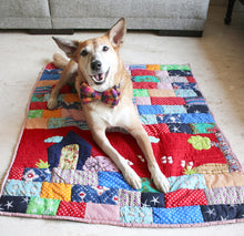 Lanapaws patchwork dog bed mat red