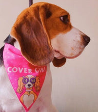 Beagle wearing Lana Paws Diva dog bandana for girl dog