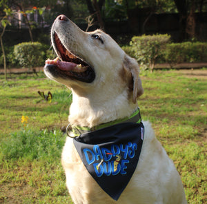 Lana Paws dog bandana scarf and dog accessories for dog daddy