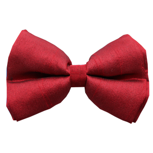 Crimson Red Silk Dog Bow tie (Adjustable)