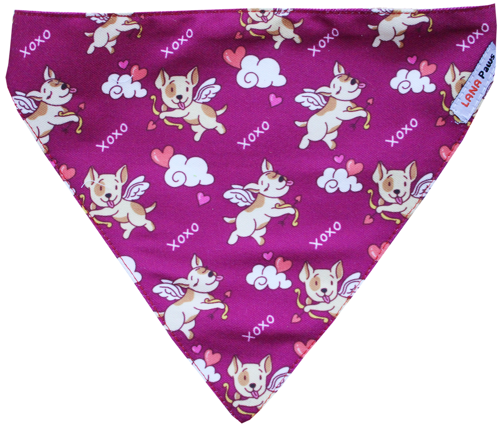 Stupid Cupid - Adjustable Dog Bandana/ Dog Scarf (Purple)