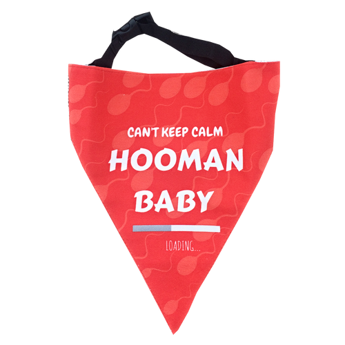 Hooman Baby Loading - Announcement Adjustable Bandana