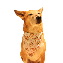 Lana Paws cupid dog bandana scarf