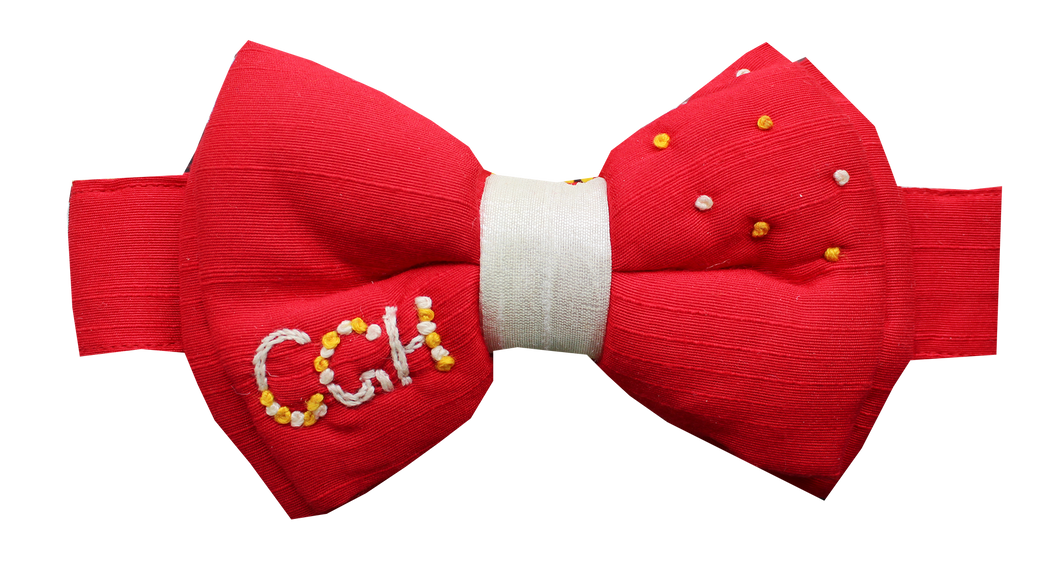 Lana Paws personalised dog bow tie