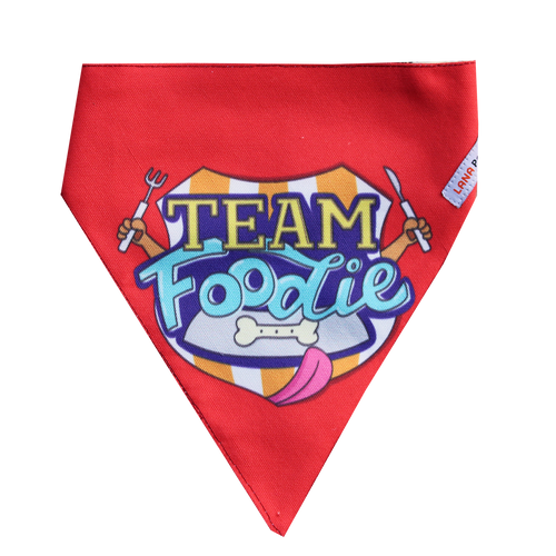 Lana Paws team foodie dog bandana scarf