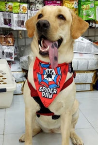 Lana Paws superhero dog bandana spiderman