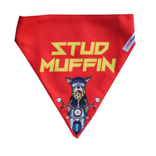 Stud Muffin - Adjustable Bandana