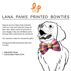 Multi-Coloured Checks - Adjustable Dog Bowtie