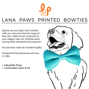 Aqua Blue Silk Dog Bow tie (Adjustable)