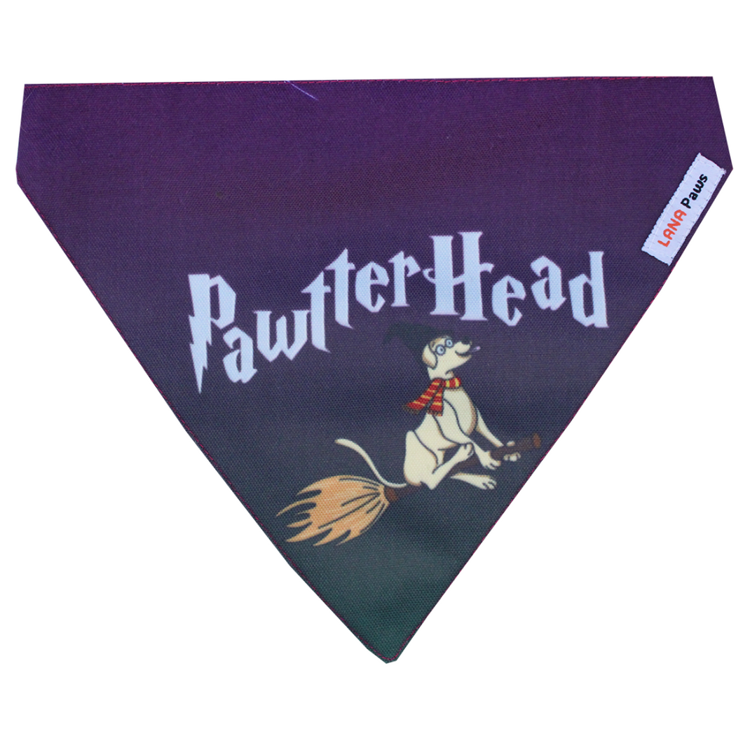 Lana paws harry potter fan dog bandana