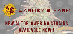 New auto seeds from Barney's Farm out now...