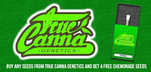 New seed bank and free seeds - True Canna Genetics