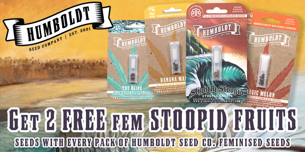 Free Stoopid Fruits Seeds Humboldt Natural Selection