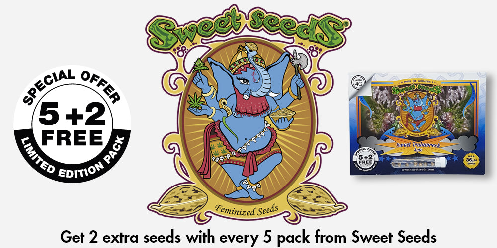 Free Sweet Seeds Natural Selection