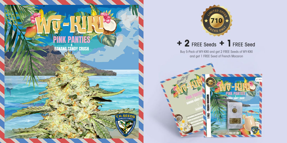 Get 3 free seeds with every 5 pack of Wy-Kiki cannabis seeds Natural Selection