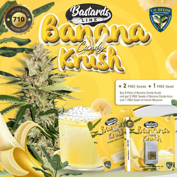 T.H. Seeds Banana Candy Krush Limited Edition Feminised Seeds