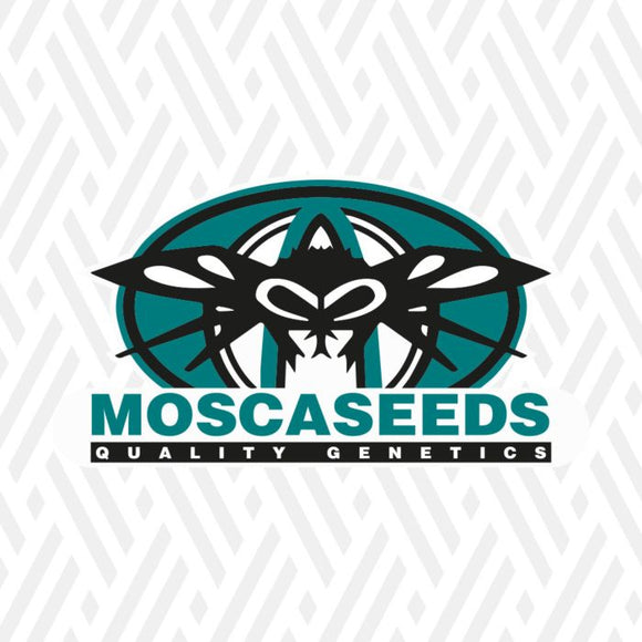 Mosca Seeds Bubble Party Feminised Seeds