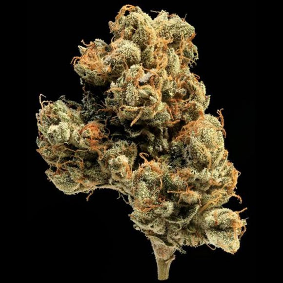 California Strains – Natural Selection Leeds