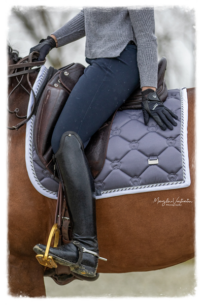 What's New? Three Inspiring Ideas For Equestrians for This Week
