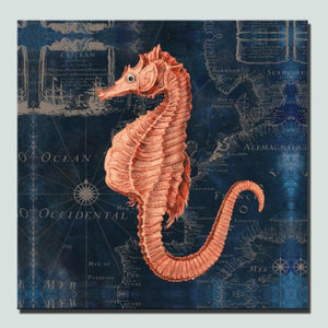 toile hippocampe