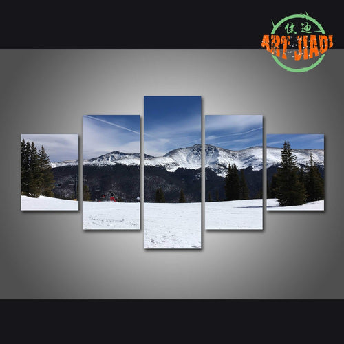 5 Piece/set Canvas Art 5 panels Snowberg Skier's Playground HD Canvas Paintings Decorations For Home Wall Art Prints Canvas \H24