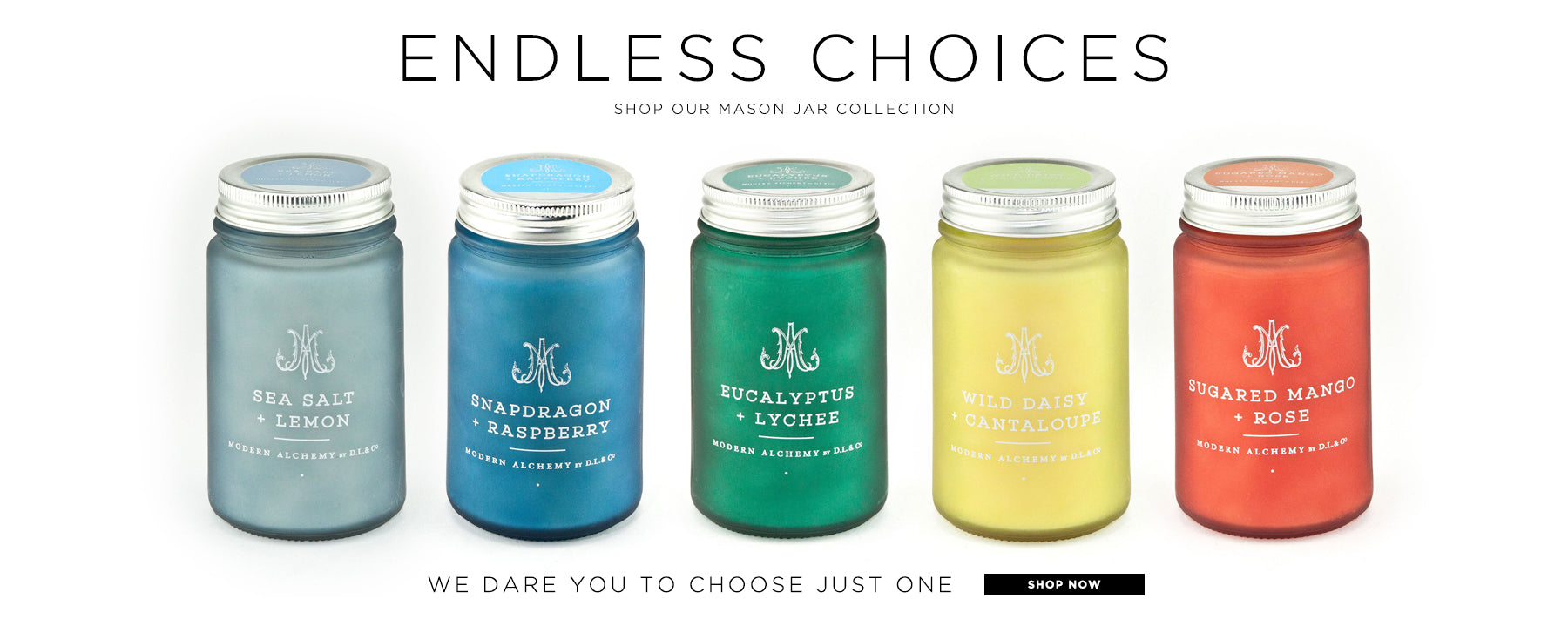 Endless choices. Shop our mason jar collection. We dare you to choose just one. Shop now.