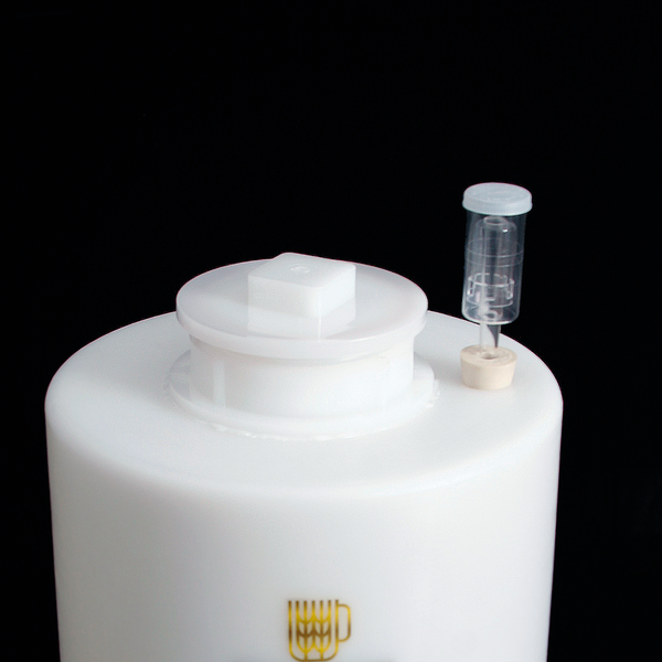 8 Gallon Conical Fermenter - 8 The Great