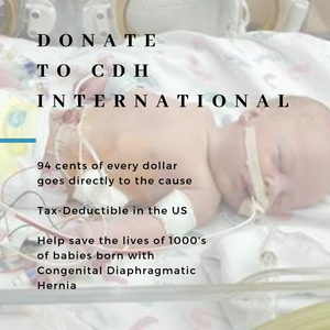 Donate Now - CDH International