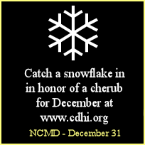 Virtual Candles and Snowflakes - CDH International