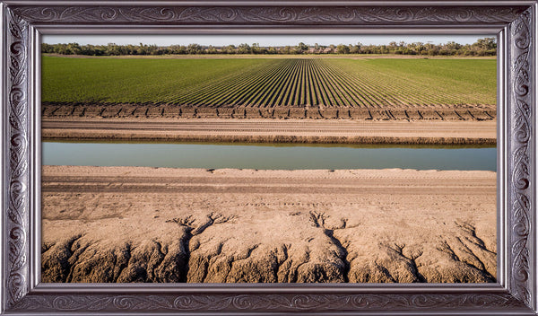 Cotton Irrigation Mungindi
