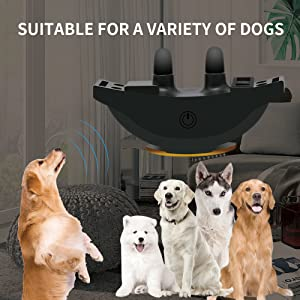 Peteme_Shock_Collar_For_Dogs_key_feature